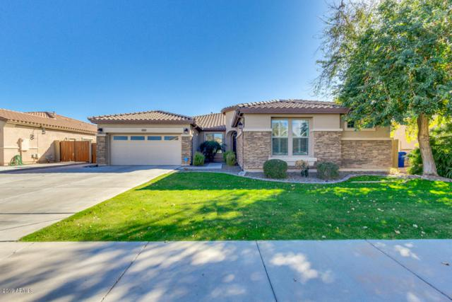 10823 E Reginald Avenue, Mesa, AZ 85212 (MLS #5887296) :: Brett Tanner Home Selling Team