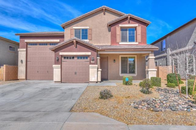 12006 W Chase Lane, Avondale, AZ 85323 (MLS #5887301) :: Brett Tanner Home Selling Team