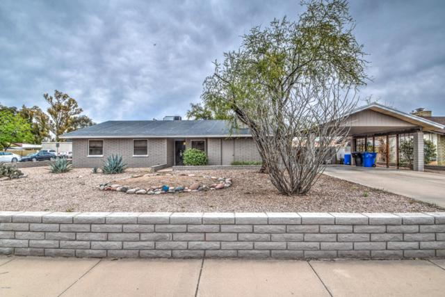 1911 N Daley Street, Mesa, AZ 85203 (MLS #5887320) :: Homehelper Consultants