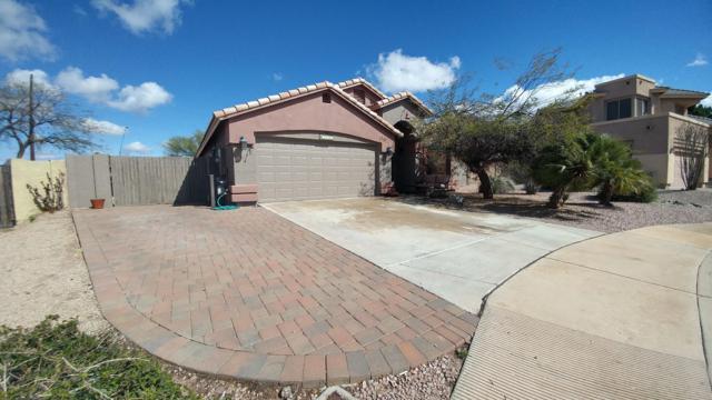 3557 N San Gabriel Circle, Mesa, AZ 85215 (MLS #5887342) :: Occasio Realty