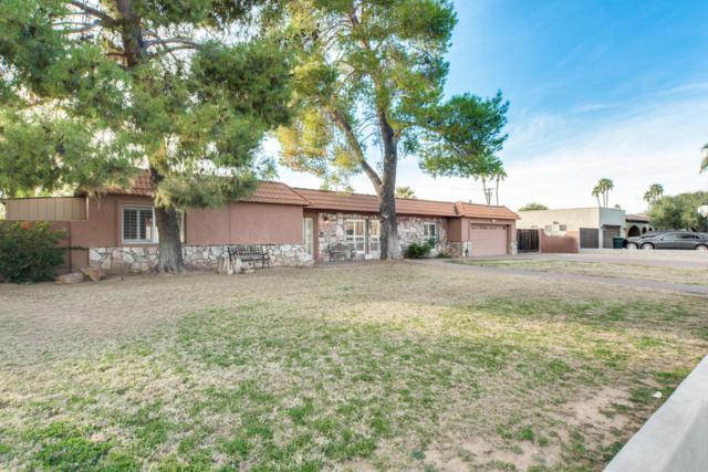 14836 N Hana Maui Drive, Phoenix, AZ 85022 (MLS #5887348) :: Homehelper Consultants