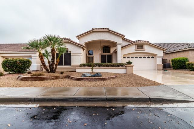 17659 W Buena Vista Drive, Surprise, AZ 85374 (MLS #5887358) :: Kortright Group - West USA Realty