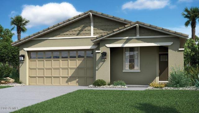 2923 E Fraktur Road, Phoenix, AZ 85040 (MLS #5887364) :: Kortright Group - West USA Realty
