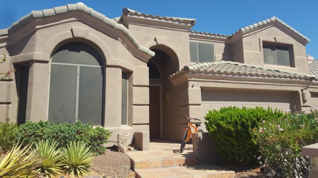 16016 S 7TH Street, Phoenix, AZ 85048 (MLS #5887371) :: The Pete Dijkstra Team