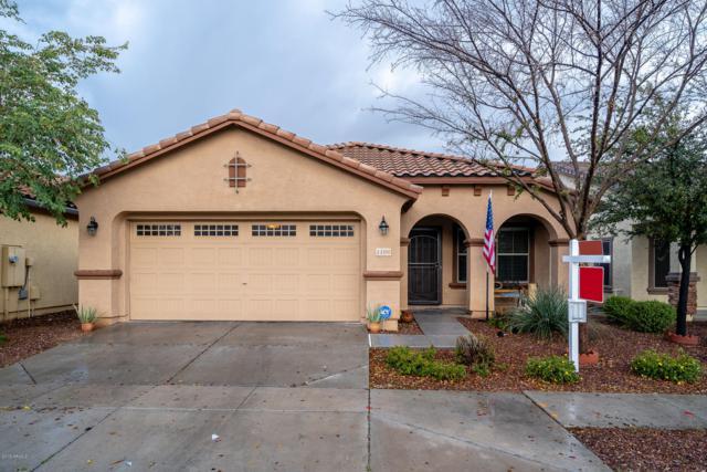 1106 S Olympic Drive, Gilbert, AZ 85296 (MLS #5887393) :: Homehelper Consultants