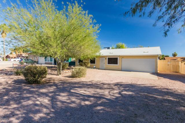2237 S Royal Palm Road, Apache Junction, AZ 85119 (MLS #5887405) :: The Bill and Cindy Flowers Team