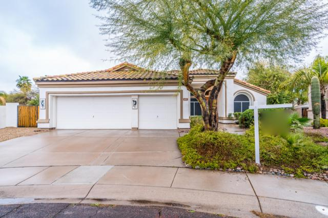682 N Sicily Court, Chandler, AZ 85226 (MLS #5887417) :: Homehelper Consultants