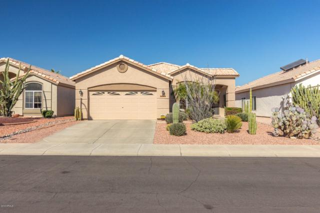 9014 W Escuda Drive, Peoria, AZ 85382 (MLS #5887420) :: Kortright Group - West USA Realty