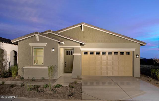 2830 E Hidalgo Avenue, Phoenix, AZ 85040 (MLS #5887462) :: Kortright Group - West USA Realty