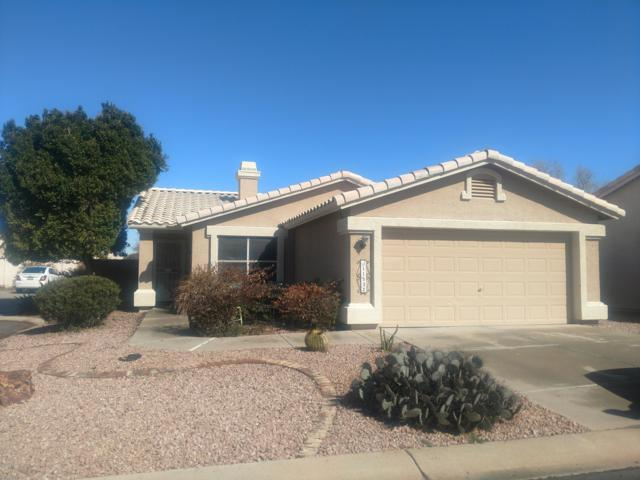 11532 W Coral Snake Court, Surprise, AZ 85378 (MLS #5887466) :: Yost Realty Group at RE/MAX Casa Grande