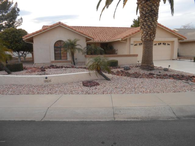 19836 N 98TH Lane, Peoria, AZ 85382 (MLS #5887474) :: Kortright Group - West USA Realty
