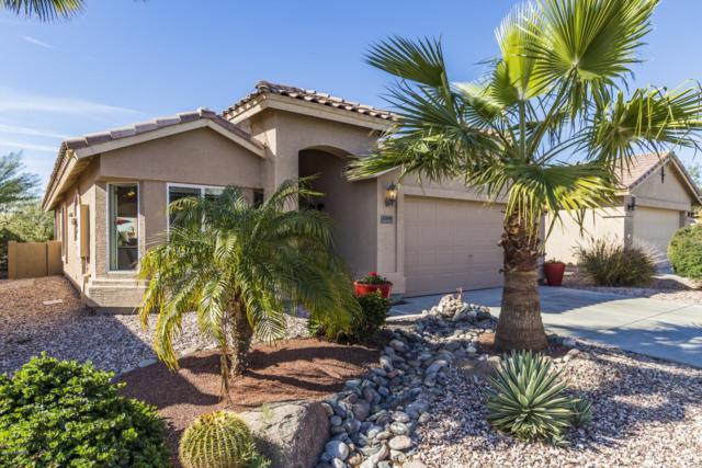 23199 W Lasso Lane, Buckeye, AZ 85326 (MLS #5887484) :: Kortright Group - West USA Realty