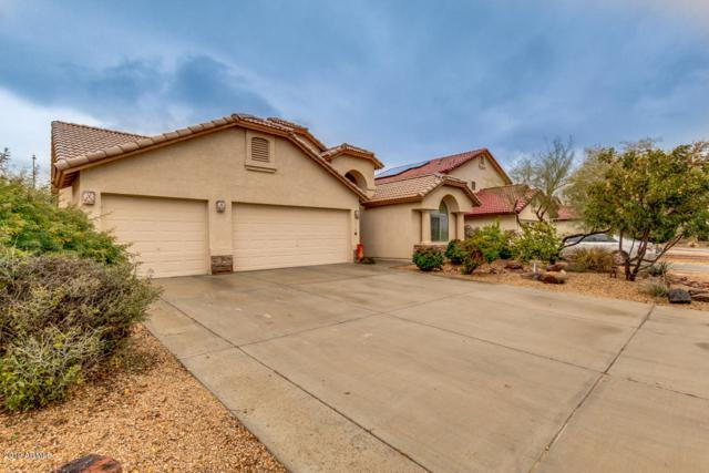 719 W Milada Drive, Phoenix, AZ 85041 (MLS #5887488) :: Lux Home Group at  Keller Williams Realty Phoenix