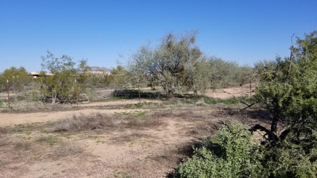 1540 W Rambling Road, Phoenix, AZ 85086 (MLS #5887496) :: Kortright Group - West USA Realty