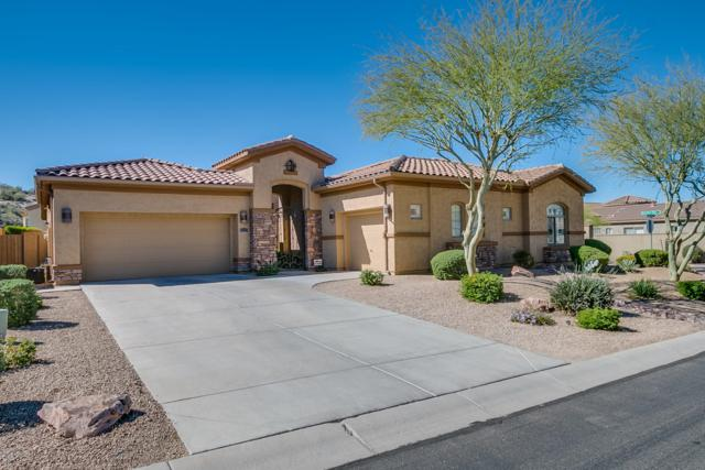 8531 E Twisted Leaf Drive, Gold Canyon, AZ 85118 (MLS #5887505) :: The Bill and Cindy Flowers Team