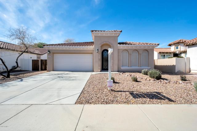 3298 S Ashley Drive, Chandler, AZ 85286 (MLS #5887532) :: CC & Co. Real Estate Team