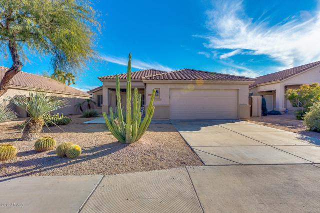 7455 W Potter Drive, Glendale, AZ 85308 (MLS #5887537) :: Devor Real Estate Associates