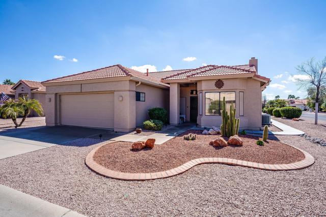 10303 E Nacoma Drive, Sun Lakes, AZ 85248 (MLS #5887648) :: Yost Realty Group at RE/MAX Casa Grande