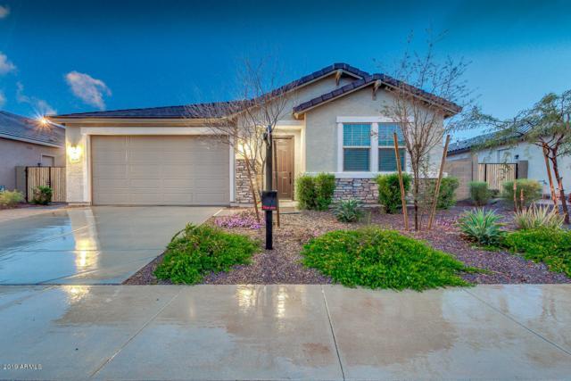 1638 N 214TH Avenue, Buckeye, AZ 85396 (MLS #5887658) :: CC & Co. Real Estate Team
