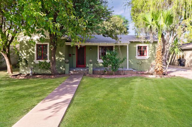 1216 S Maple Avenue, Tempe, AZ 85281 (MLS #5887670) :: Yost Realty Group at RE/MAX Casa Grande