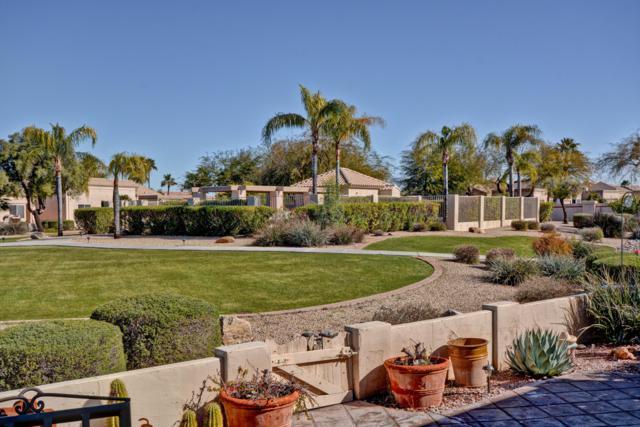 8504 W Oraibi Drive, Peoria, AZ 85382 (MLS #5887683) :: Yost Realty Group at RE/MAX Casa Grande