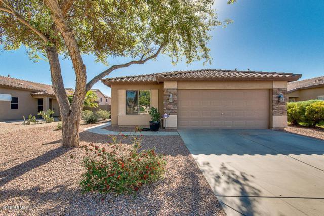 22447 N Bishop Drive, Maricopa, AZ 85138 (MLS #5887699) :: Revelation Real Estate