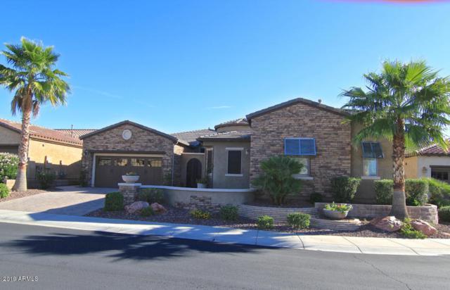 28817 N 126th Lane, Peoria, AZ 85383 (MLS #5887862) :: Keller Williams Realty Phoenix