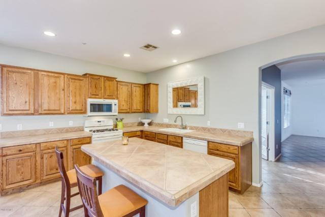 12659 W Blackstone Lane, Peoria, AZ 85383 (MLS #5888190) :: Occasio Realty