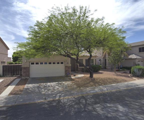 13319 W Jacobson Drive, Litchfield Park, AZ 85340 (MLS #5888205) :: The Results Group