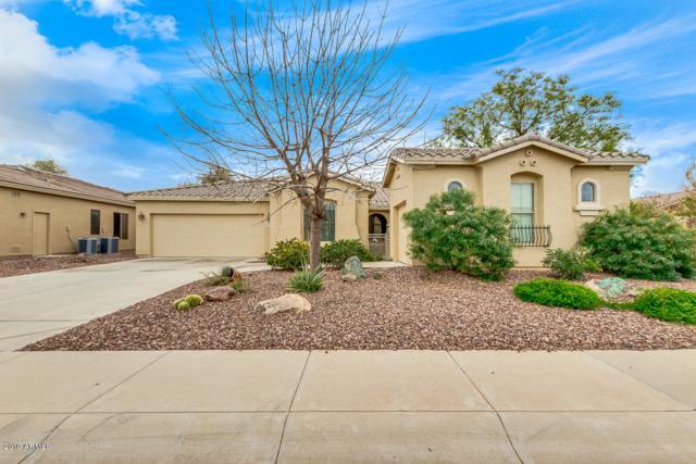 42619 W Mallard Lane, Maricopa, AZ 85138 (MLS #5888258) :: Revelation Real Estate