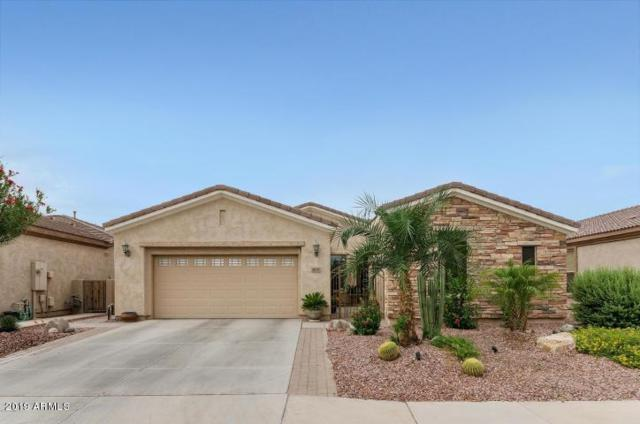4641 E Narrowleaf Drive, Gilbert, AZ 85298 (MLS #5888309) :: CC & Co. Real Estate Team