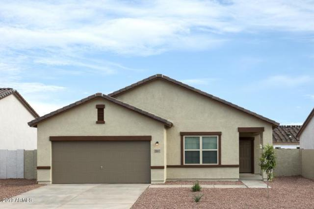 4516 W Feather Plume Drive, San Tan Valley, AZ 85142 (MLS #5888335) :: Kortright Group - West USA Realty