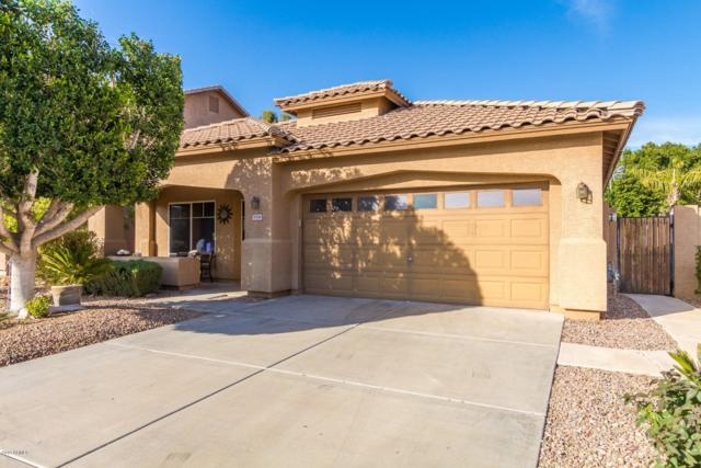 8166 W Rose Garden Lane, Peoria, AZ 85382 (MLS #5888441) :: CC & Co. Real Estate Team