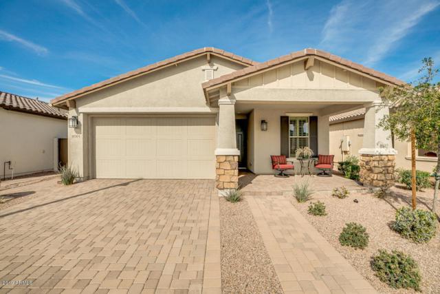 10304 E Tupelo Avenue, Mesa, AZ 85212 (MLS #5888514) :: Riddle Realty