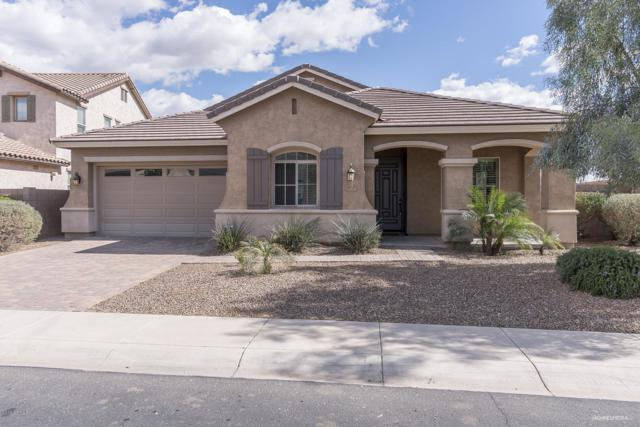 4053 S Pleasant Place, Chandler, AZ 85248 (MLS #5888685) :: Santizo Realty Group