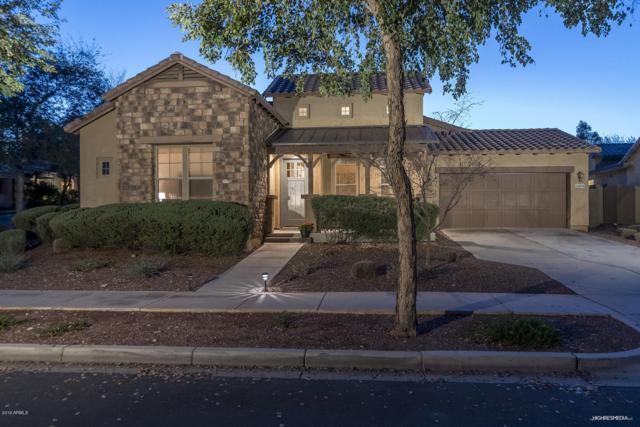21014 W Cora Vista, Buckeye, AZ 85396 (MLS #5888787) :: CC & Co. Real Estate Team