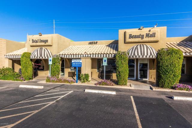 10247 N Scottsdale Road, Scottsdale, AZ 85253 (MLS #5888815) :: Brett Tanner Home Selling Team