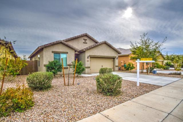 13283 E Tumbleweed Lane, Florence, AZ 85132 (MLS #5889007) :: CC & Co. Real Estate Team