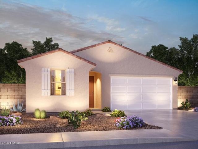 7247 N 123RD Drive, Glendale, AZ 85307 (MLS #5889113) :: Santizo Realty Group