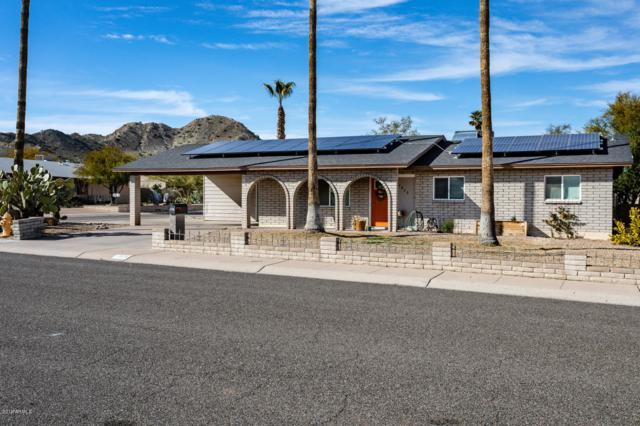 2820 E Surrey Avenue, Phoenix, AZ 85032 (MLS #5889142) :: Yost Realty Group at RE/MAX Casa Grande