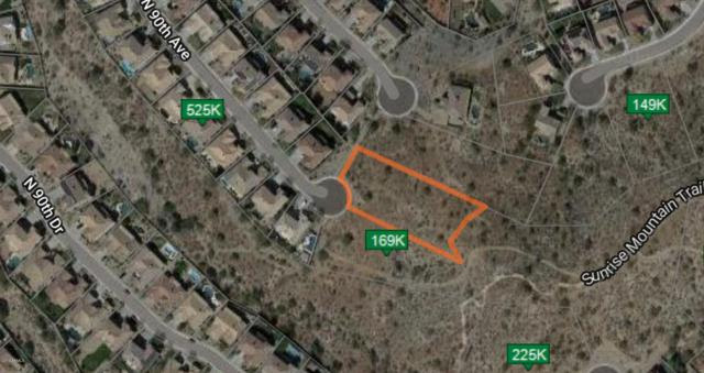 26805 N 90TH Avenue, Peoria, AZ 85383 (MLS #5889172) :: Yost Realty Group at RE/MAX Casa Grande