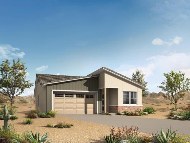 3091 S Valerie Drive, Chandler, AZ 85286 (MLS #5889177) :: The Daniel Montez Real Estate Group