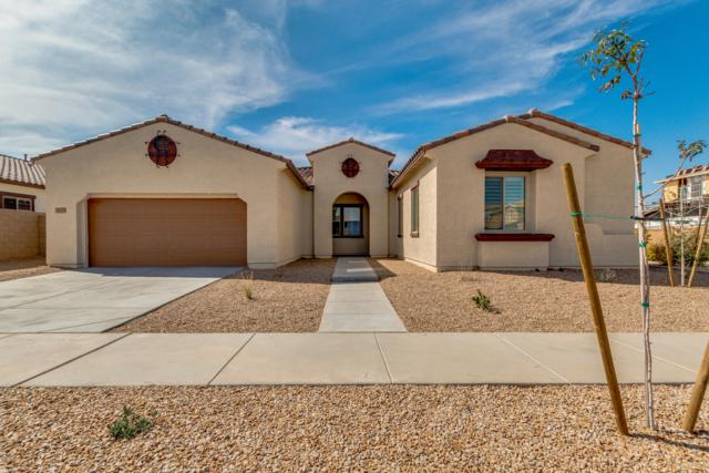 22738 S 228TH Place, Queen Creek, AZ 85142 (MLS #5889244) :: Lux Home Group at  Keller Williams Realty Phoenix