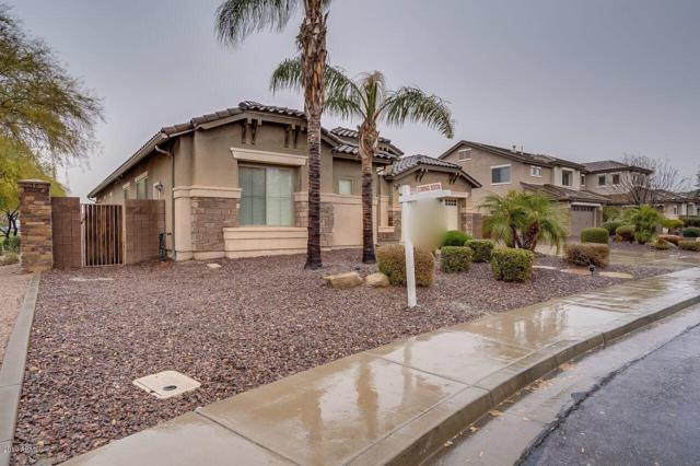 2438 E Carob Drive, Gilbert, AZ 85298 (MLS #5889257) :: RE/MAX Excalibur