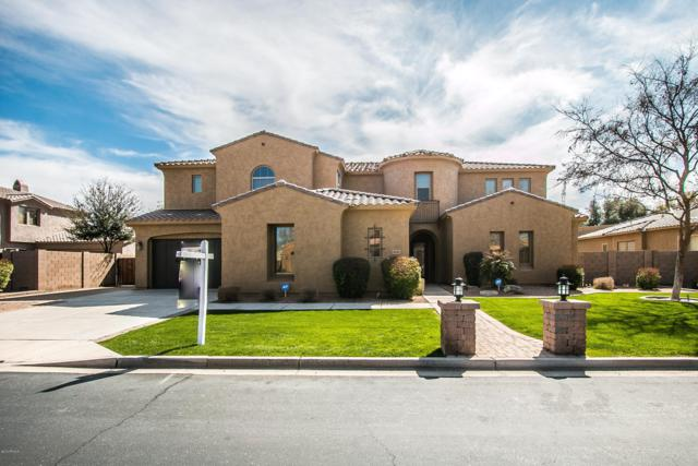 20261 E Poco Calle, Queen Creek, AZ 85142 (MLS #5889278) :: Revelation Real Estate