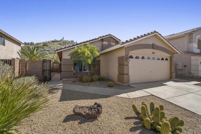 2220 E Heston Drive, Phoenix, AZ 85024 (MLS #5889283) :: Yost Realty Group at RE/MAX Casa Grande