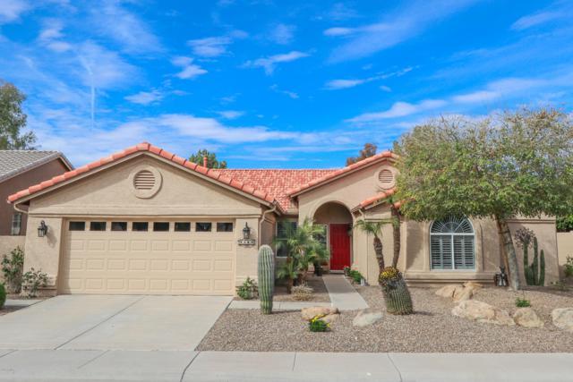 5180 S Tanglewood Drive, Sun Lakes, AZ 85248 (MLS #5889285) :: Occasio Realty