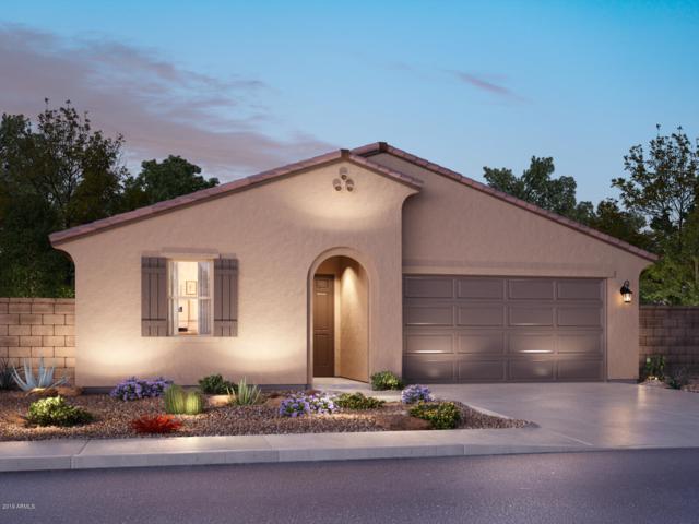 7221 E Hatchling Way, San Tan Valley, AZ 85143 (MLS #5889291) :: The Daniel Montez Real Estate Group