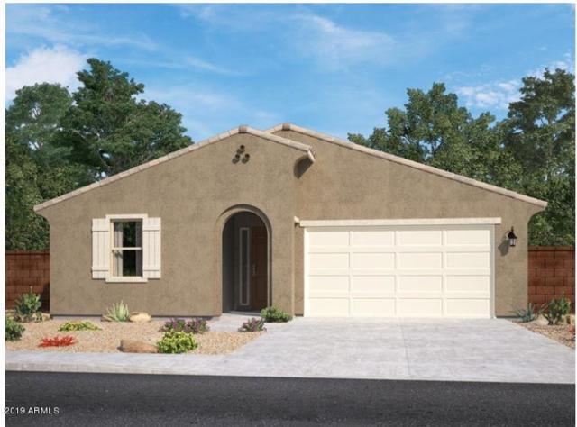 7241 E Hatchling Way, San Tan Valley, AZ 85143 (MLS #5889305) :: Team Wilson Real Estate