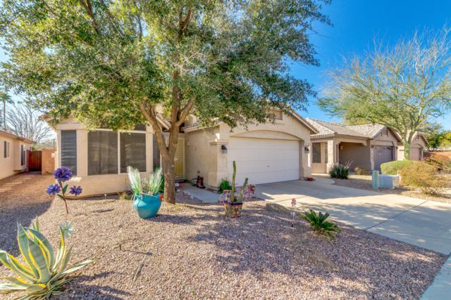 3082 N 86TH Place, Scottsdale, AZ 85251 (MLS #5889319) :: RE/MAX Excalibur